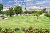 Tuileries garden, Paris — Stock Photo