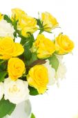 Bouquet of fresh roses — Stock Photo