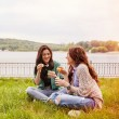 Two cheerful sisters sitting on the grass and blowing bubbles — Stock Photo #73347383
