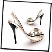 Silver Fashion shoes — Stock Vector