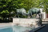 Sculpture of fighting bulls — ストック写真
