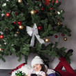 Young beautiful woman near new year tree with present — Stock Photo #58376709