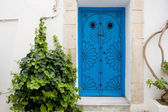 Blue doors and white wall of building in Sidi Bou Said, Tunisia — Foto Stock