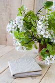 A bouquet of flowering branches of fruit trees — Stock Photo