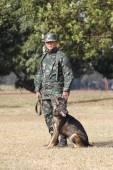 Training Dogs of War — 图库照片