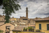 Overview ancient city of Siena, Italy — Stock Photo