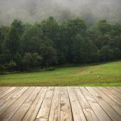 Wood terrace and perspective view on forest and meadow in fog — Stock Photo
