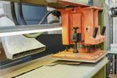 Semi-automática prima para a produção de palmilhas — Fotografia Stock