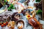 Raw seafood — Stock Photo