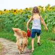 Little girl with golden retriever — Stok fotoğraf #54580801