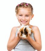 Little girl holding a guinea pig — Stock Photo