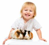 Little girl holding a guinea pig — Stock Photo