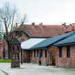Auschwitz Concentration Camp — Stock Photo #60431605