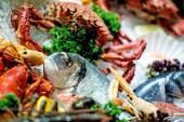 Raw seafood — Stock Photo