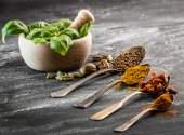 Basil and spices — Stockfoto