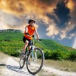 Girl rides a bicycle — Stock Photo #74237827