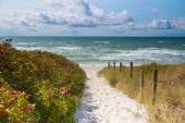 Access Ristinge beach — Stock Photo