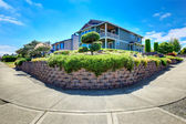 American house with landscaped front yard. Panoramic view — Stock Photo
