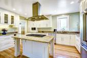 Kitchen island with built-in stove, granite top and hood — Stock fotografie