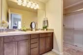 Bathroom vanity cabinet with large mirror — Stockfoto