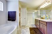 Refrescante baño con tina de baño y puerta vidrio — Foto de Stock