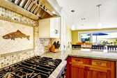 Modern house interior. Kitchen room with shiny granite tops and  — Stock Photo
