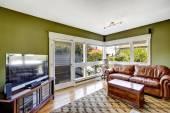 Wnetrze zielony kolor z bogatym skórzane kanapy — Zdjęcie stockowe