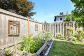 Small garden bed on backyad — Stock Photo