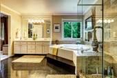 Interior de baño de lujo — Foto de Stock