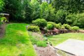 Beautiful backyard landscape and garden view — Stock Photo