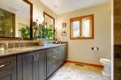 Modern bathroom interior with big cabinet and two mirrors — Zdjęcie stockowe