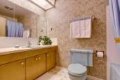 Bathroom with light brown wallpaper — Foto de Stock