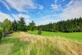 Beautiful landscape in evergreen Washington state. Late summer — Stock Photo