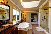 Luxury bathroom interior with bath tub and glass door shower — 图库照片