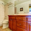 Bathroom vanity cabinet with drawers and two sinks — Stock Photo #55833525