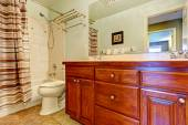 Bathroom vanity cabinet with drawers and two sinks — Stockfoto