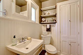 Bathroom with plank paneled wall  — 图库照片