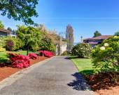 Driveway to home lined with flower bushes. — Stock Photo