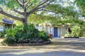 Simple hawaiian house with greenery. — Stock Photo