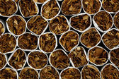 Cigarettes — Photo