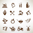 Farm and agriculture vector icons collection — Stock Vector #67397593