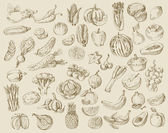 Hand drawn fruit and vegetables — Wektor stockowy