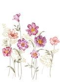 Illustration bouquet — Stock fotografie