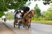 Horse drawn carriage in Cuba — Stockfoto