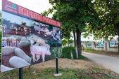 Cuban Pig Farm Entrance — Stock Photo