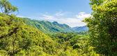 Cuban Natural Landscape — Stock Photo