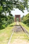 Bridge with train railroad — Foto de Stock