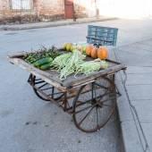 Neighborhood food stand — 图库照片