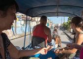 Küba'da çizilen at arabası — Stok fotoğraf