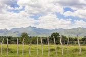 Amazing Cuban Countryside Landscape — Stock Photo